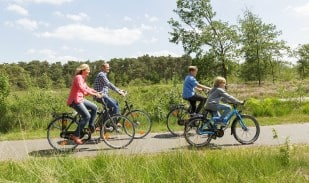 Réduction forfait location Vélo Center Parcs